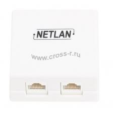 Настенная розетка NETLAN, 2 порта, Кат.5e (Класс D), 100МГц, RJ45/8P8C, 110, T568A/B, неэкранированная, белая, уп-ка 10шт. ( EC-UWO-2-UD2-WT-10 )